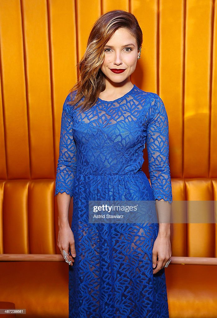 Actress Sophia Bush attends the 2014 National Dance Institute Annual Gala at Best Buy Theater on April 28, 2014 in New York City.