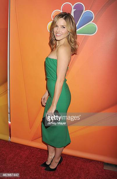 Actress Sophia Bush attends the NBCUniversal 2015 Press Tour at the Langham Huntington Hotel on January 16 2015 in Pasadena California