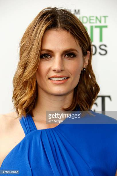 Actress Stana Katic attends the 2014 Film Independent Spirit Awards at Santa Monica Beach on March 1 2014 in Santa Monica California