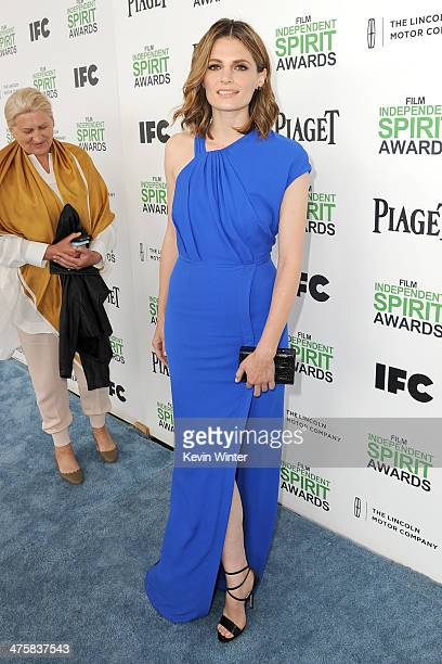 Actress Stana Katic attends the 2014 Film Independent Spirit Awards at Santa Monica Beach on March 1, 2014 in Santa Monica, California.