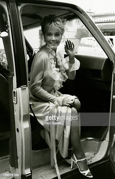 Actress Stella Stevens attends the press conference for Flamingo Road on February 9 1982 at Burbank Studios in Burbank California