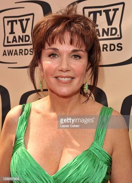 Actress Stepfanie Kramer arrives at the 8th Annual TV Land Awards at Sony Studios on April 17 2010 in Los Angeles California