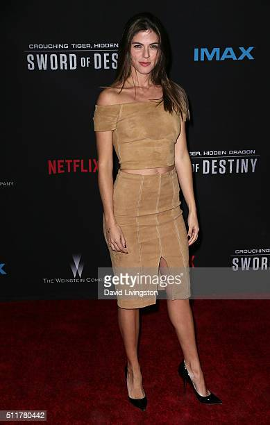 Actress Stephanie Cayo attends the premiere of Netflix's Crouching Tiger Hidden Dragon Sword of Destiny at AMC Universal City Walk on February 22...