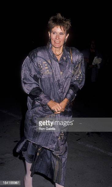 Actress Susan Clark attends the birthday party for Stan Sheinbaum on June 12 1990 at the Barker Hanger at Santa Monica Airport in Santa Monica...