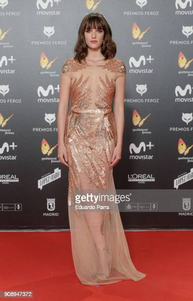 Actress Susana Abaitua attends Feroz Awards 2018 at Magarinos Complex on January 22 2018 in Madrid Spain