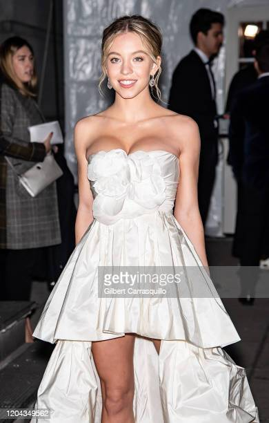 Actress Sydney Sweeney is seen arriving to the 2020 amfAR New York Gala at Cipriani Wall Street on February 05, 2020 in New York City.