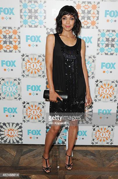 Actress Tamara Taylor arrives at the FOX AllStar Party 2014 Television Critics Association Summer Press Tour at Soho House on July 20 2014 in West...