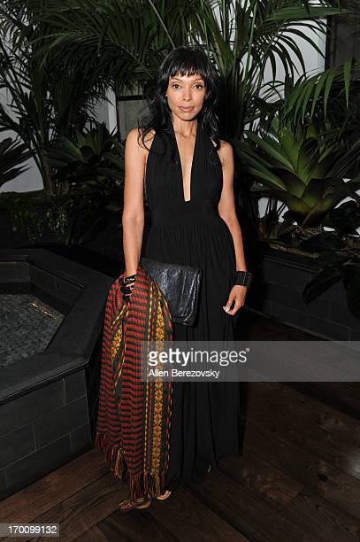 Actress Tamara Taylor attends Jeremy Renner's and Kristoffer Winters' celebration of the launch of Robb Report Home Style on June 6 2013 in Los...