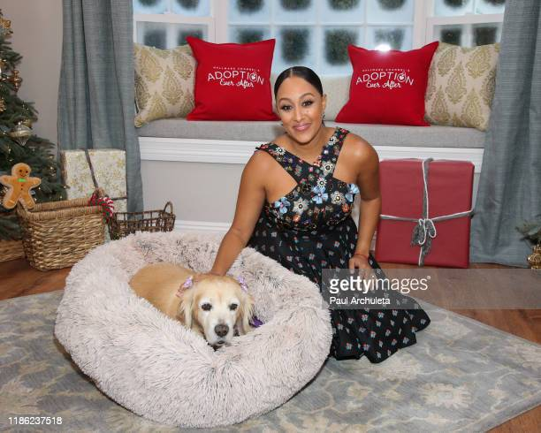 "Actress Tamera Mowry-Housley visits Hallmark Channel's ""Home & Family"" at Universal Studios Hollywood on November 07, 2019 in Universal City,..."