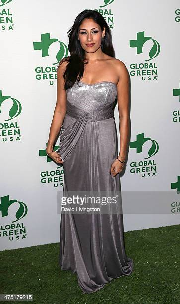 Actress Tehmina Sunny attends Global Green USA's 11th Annual PreOscar Party at Avalon on February 26 2014 in Hollywood California