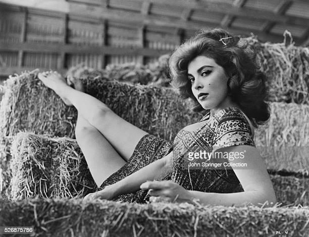 Actress Tina Louise Reclining on Hay Bales