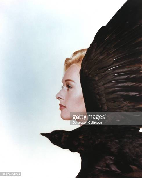 Actress Tippi Hedren in a scene from the movie The Birds