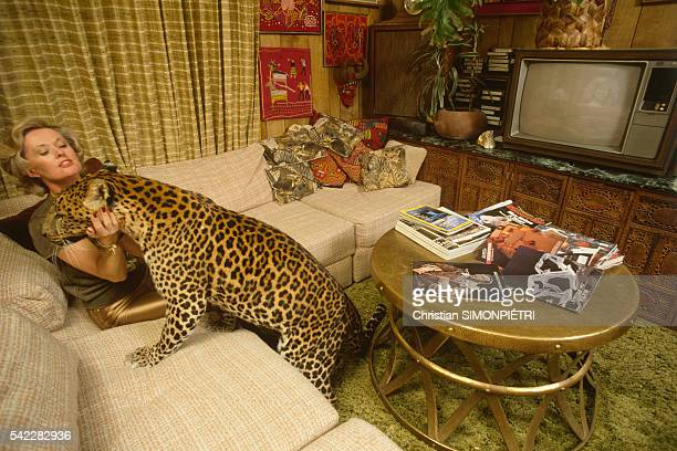 Actress Tippi Hedren strokes a jaguar in her living room on the Shambala reserve she founded and manages