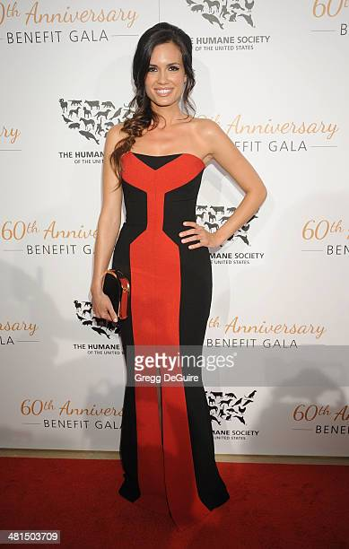 Actress Torrey DeVitto arrives at The Humane Society Of The United States 60th anniversary benefit gala at The Beverly Hilton Hotel on March 29, 2014...