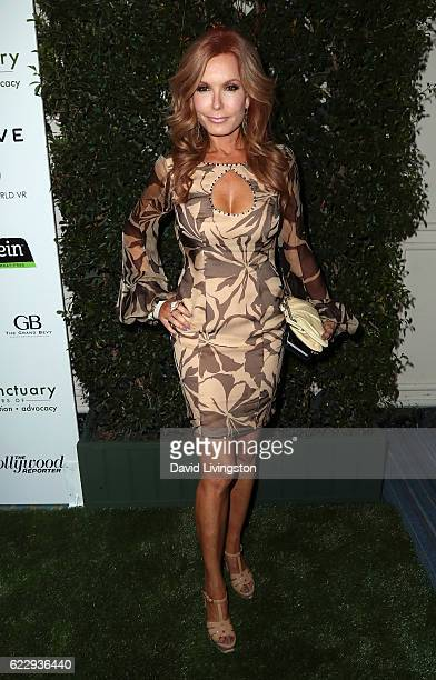 Actress Tracey E Bregman attends the Farm Sanctuary's 30th Anniversary Gala at the Beverly Wilshire Four Seasons Hotel on November 12 2016 in Beverly...