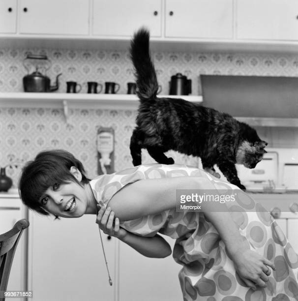 Actress Una Stubbs pictured at her Radlett home with her cat called 'Corrigan' 13th December 1964