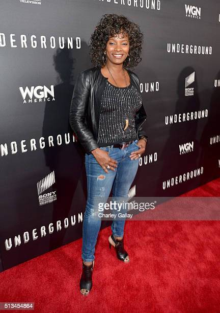 Actress Vanessa Bell Calloway attends WGN America's 'Underground' World Premiere on March 2 2016 in Los Angeles California