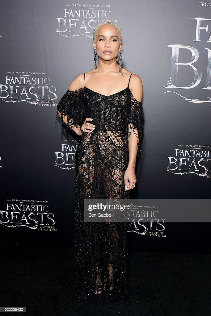 """Fantastic Beasts And Where To Find Them"" World Premiere : News Photo"