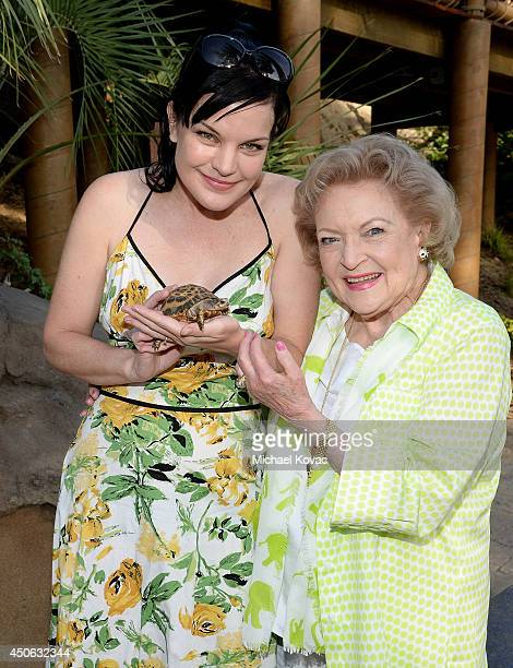 Actresses Pauley Perrette and Betty White attend the Greater Los Angeles Zoo Association's 44th Annual Beastly Ball at Los Angeles Zoo on June 14...