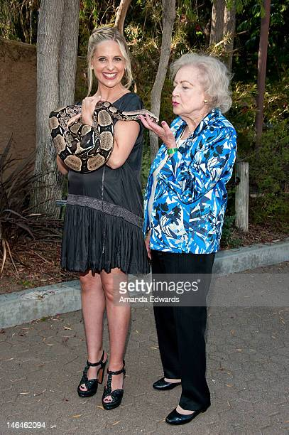 Actresses Sarah Michelle Gellar and Betty White pose with Jacob, a Columbian Red Tail Boa Constrictor at the Greater Los Angeles Zoo Association's...