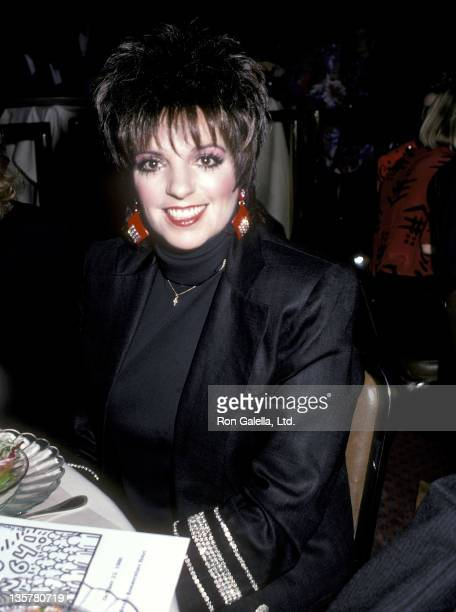 Actress/Singer Liza Minnelli attends Vote No on 64 Dinner to Raise Awareness Against Lyndon LaRouche's AIDS Initiative Bill on October 22 1986 at the...