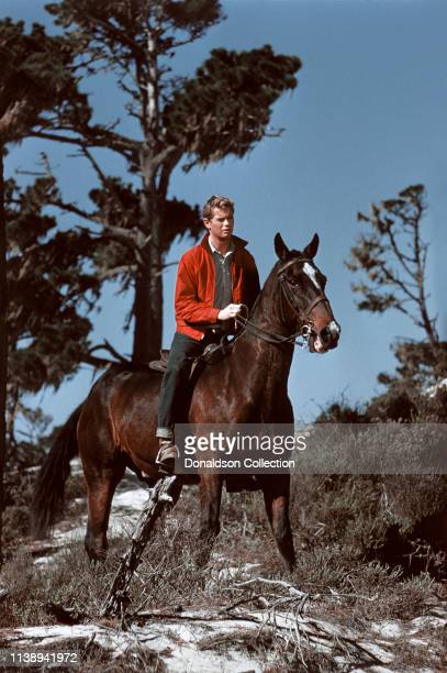 Actror Troy Donahue poses for a portrait session on a horse in 1960 in San Francisco California