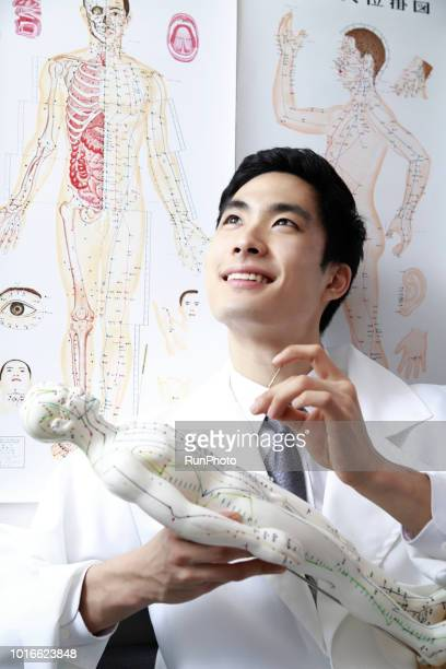 Acupuncturist applying needles on acupuncture model