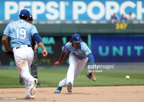 Adalberto Mondesi of the Kansas City Royals fields the ball during the game against the Boston Red Sox at Kauffman Stadium on June 06 2019 in Kansas...