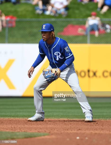 Adalberto Mondesi of the Kansas City Royals gets ready to make a play during a spring training game against the Los Angeles Angels of Anaheim at...