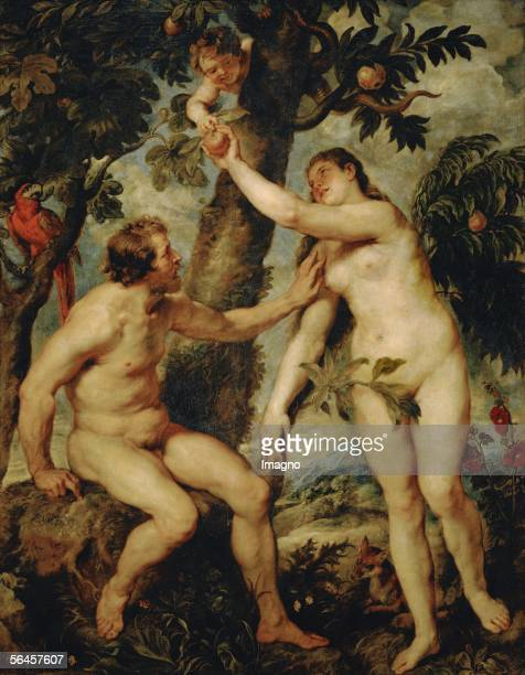 Adam and Eve a rather free copy of the painting by Titian Rubens copied the Titian painting during his second stay in Spain 16281629 Canvas 237 x 184...