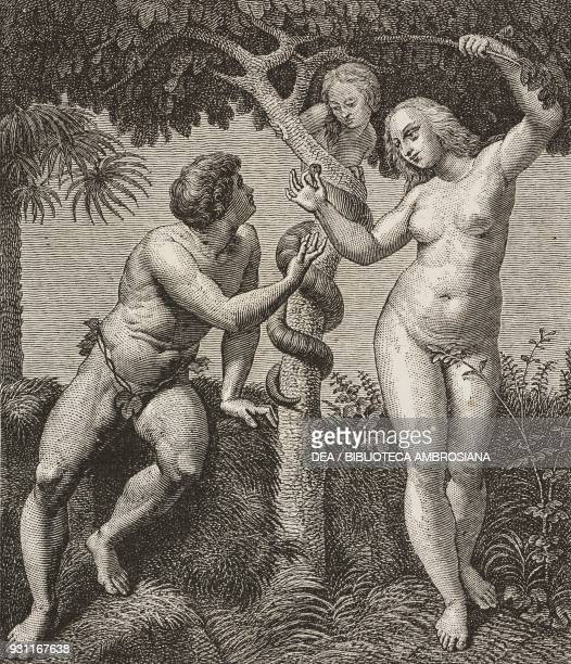 Adam and Eve and Original Sin fresco by Raphael Room of the Segnatura Apostolic Palace drawing by A Paquier from The Vatican Museums by Francesco Wey...