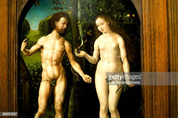 'Adam and Eve' by Jan Gossaert hangs in the Thyssen Museum on December 2 2009 in Madrid Spain
