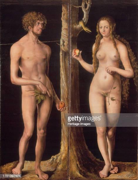 Adam and Eve c 1510 Found in the collection of the Musée des BeauxArts et dArchéologie Besançon Artist Cranach Lucas the Elder