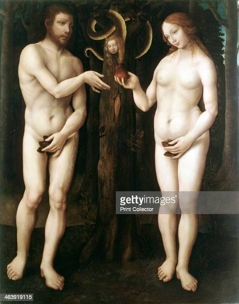 'Adam and Eve' c1520 Eve offers Adam the apple of the Tree of Knowledge while the serpent coiled round a tree looks on Adam and Eve are naked but...