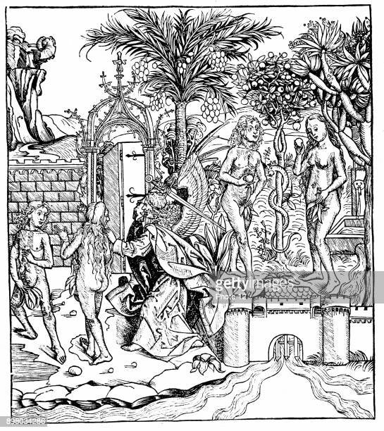 Adam and Eve tempted by the Serpent eat from the Tree of Knowledge and are expelled from the Garden of Eden by the Angel of the Lord Woodcut from...