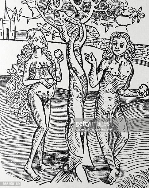 Adam and Eve tempted by the Serpent in the Garden of Eden From the 1504 edition of 'Methodus Primum Olimpiade'