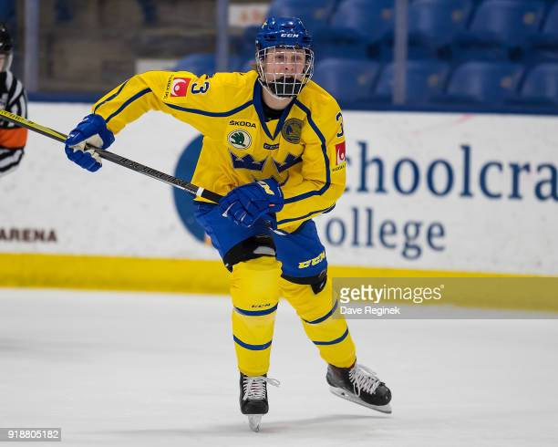 Adam Boqvist of the Sweden Nationals skates up ice against the Finland Nationals during the 2018 Under18 Five Nations Tournament game at USA Hockey...