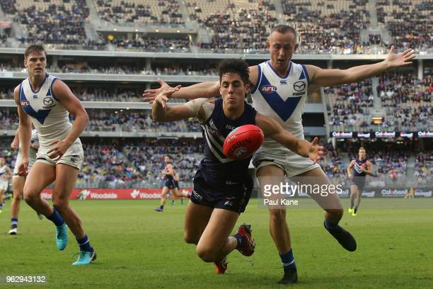 Adam Cerra of the Dockers and Billy Hartung of the Kangaroos contest for the ball during the round 10 AFL match between the Fremantle Dockers and the...