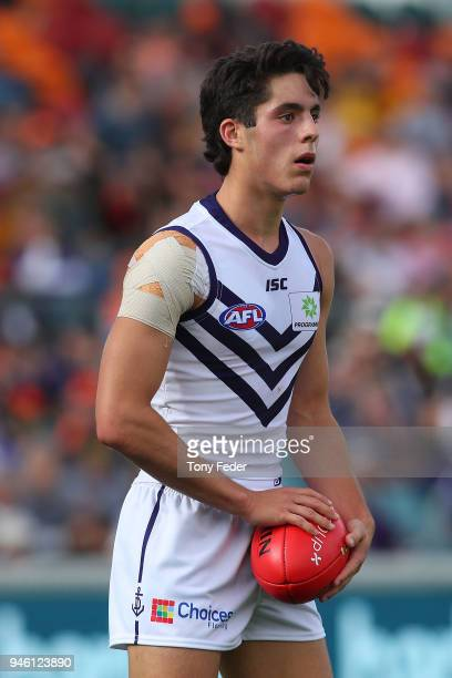 Adam Cerra of the Dockers looks on during the round four AFL match between the Greater Western Sydney Giants and the Fremantle Dockers at UNSW...