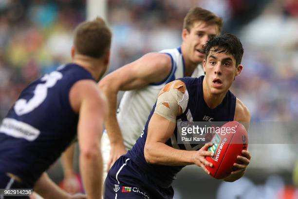 Adam Cerra of the Dockers looks to handball during the round 10 AFL match between the Fremantle Dockers and the North Melbourne Kangaroos at Optus...
