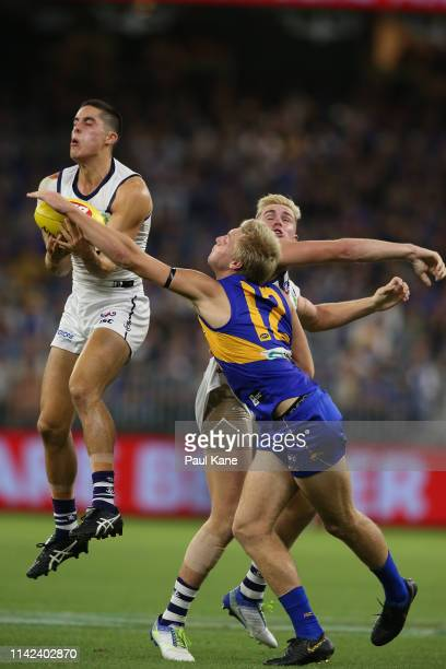 Adam Cerra of the Dockers marks the ball against Oscar Allen of the Eagles during the round four AFL match between the West Coast Eagles and the...
