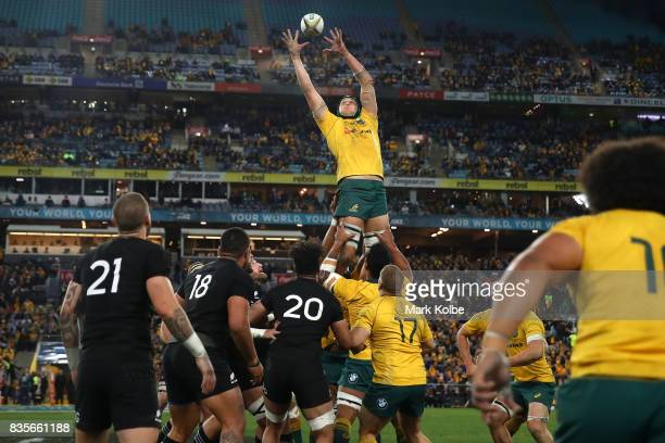 Adam Coleman of the Wallabies wins the lineout throw during The Rugby Championship Bledisloe Cup match between the Australian Wallabies and the New...