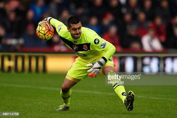 Adam Federici of Bournemouth in action during the Barclays Premier League match between AFC Bournemouth and Newcastle United at Vitality Stadium on...