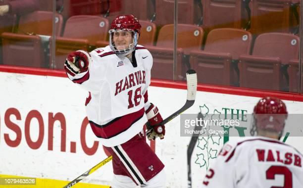 Adam Fox of the Harvard Crimson celebrates his gaol against the Boston University Terriers during NCAA hockey at The BrightLandry Hockey Center on...