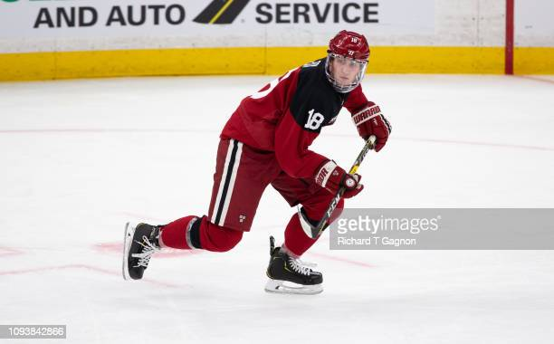 Adam Fox of the Harvard Crimson skates against the Boston College Eagles during NCAA hockey in the semifinals of the annual Beanpot Hockey Tournament...
