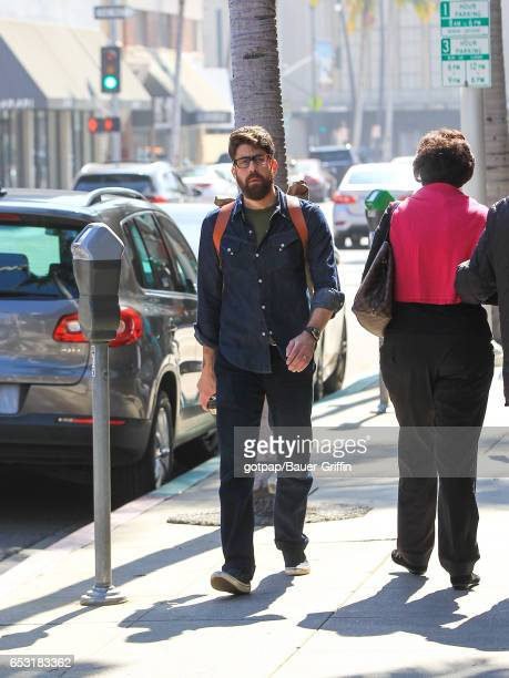Adam Goldberg is seen on March 13 2017 in Los Angeles California