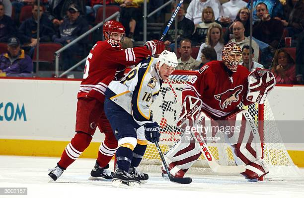 Adam Hall of the Nashville Predators battles for position in front of Brian Boucher with Brad Ference of the Phoenix Coyotes on February 21 2004 at...