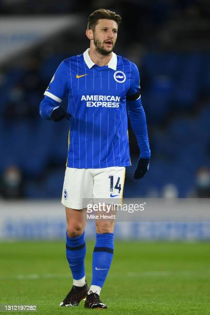 Adam Lallana of Brighton & Hove Albion looks on during the Premier League match between Brighton & Hove Albion and Everton at American Express...