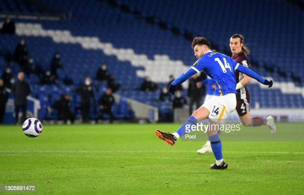 Adam Lallana of Brighton & Hove Albion scores their team's first goal during the Premier League match between Brighton & Hove Albion and Leicester...