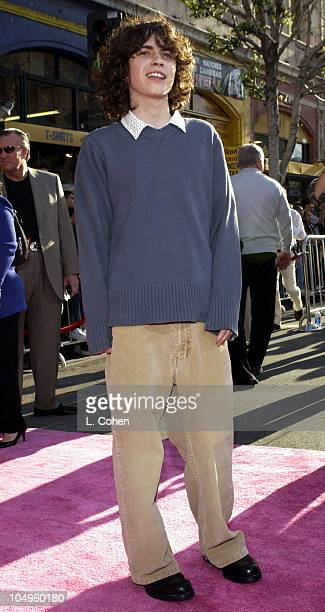 Adam Lamberg during The Lizzie McGuire Movie Premiere at The El Capitan Theater in Hollywood California United States